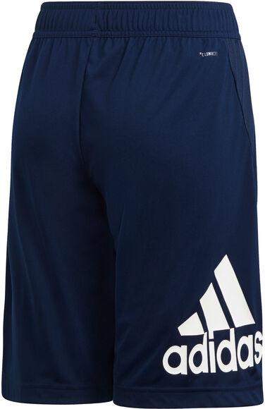 Equipment Designed2Move Shorts