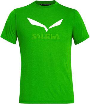 Salewa Solidlogo Dri-Rel T-Shirt Herren grün