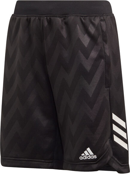 XFG Shorts