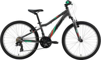 "GENESIS Melissa 24 Mountainbike 24"" grau"