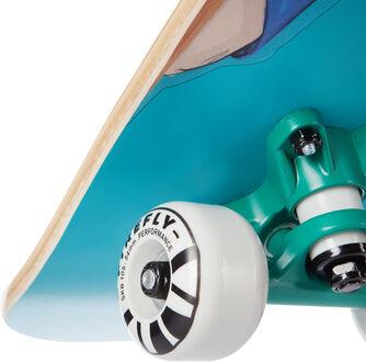 SKB 105 Skateboard