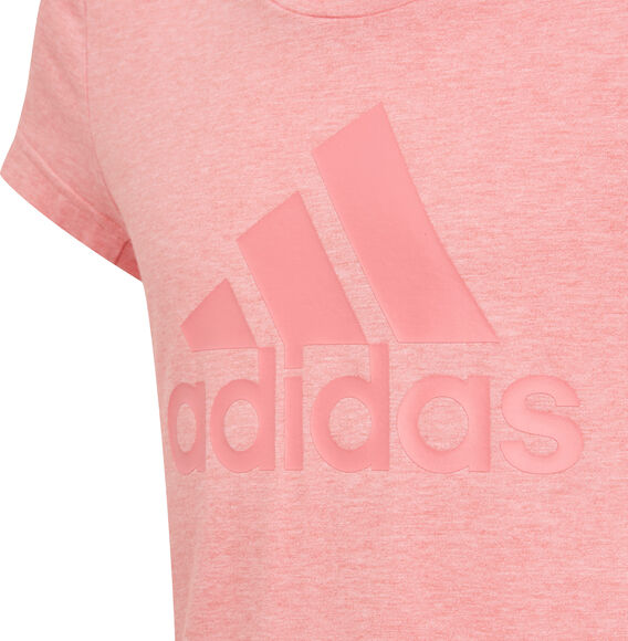 Aeroready Badge Of Sport T-Shirt
