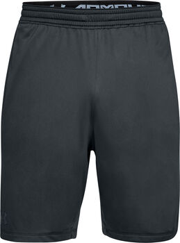 Under Armour RAID 2.0 Shorts Herren grau
