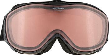 ALPINA Challenge 2.0 Skibrille Herren grau