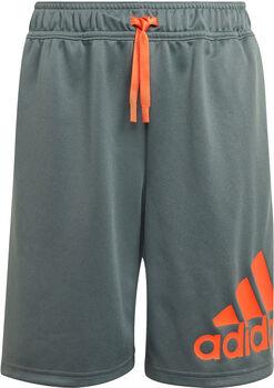 adidas Desgined 2 Move Shorts grau