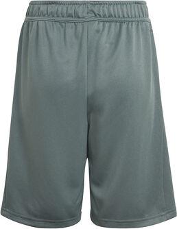 Desgined 2 Move Shorts