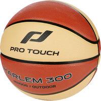 Harlem 300 Basketball