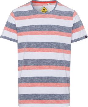 Roadsign Swan River Stripes T-Shirt Herren weiß