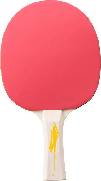Pro 2000 Tischtennisschläger