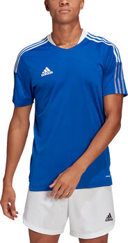 adidas Tiro 21 Trainingstrikot blau
