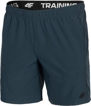 4F Shorts Herren grün