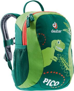 Deuter Pico grün