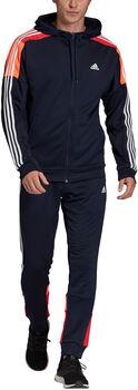 adidas MTS Trainingsanzug Herren blau