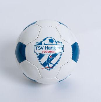 NOBRAND TSV Hartberg PAOL Miniball Herren weiß