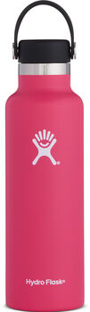 Hydro Flask Standard Mouth Isolierflasche pink