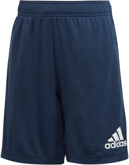 YB TR Chill Shorts