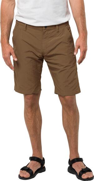Desert Valley Shorts