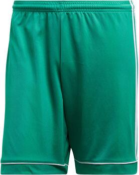 adidas Squad 17 Shorts Herren grün