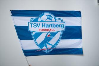 TSV Hartberg Fahne