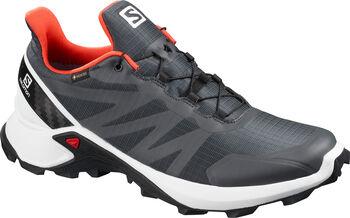 Salomon Supercross GORETEX Traillaufschuhe Herren grau