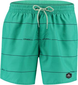 O'NEILL Pm Contourz Shorts Herren grün
