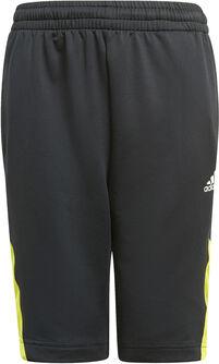 Predator Shorts