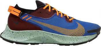 Nike Pegasus Trail 2 GTX Traillaufschuhe Herren