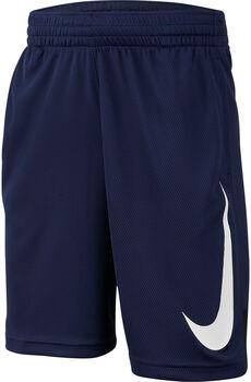 Nike Dri-FIT Shorts Jungen blau