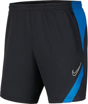 Nike Dri-FIT Academy Pro Shorts Herren grau