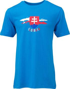 ENERGETICS EM 2020 Fan T-Shirt Herren blau