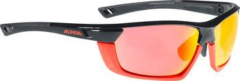 ALPINA Tri-Scray Multiframe Sonnenbrille Herren schwarz
