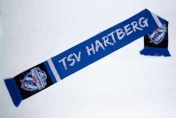 NOBRAND TSV Hartberg Jacquardschal Herren blau